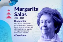 València reivindica el trabajo de científicas y tecnólogas con la campaña #DoneSTEM