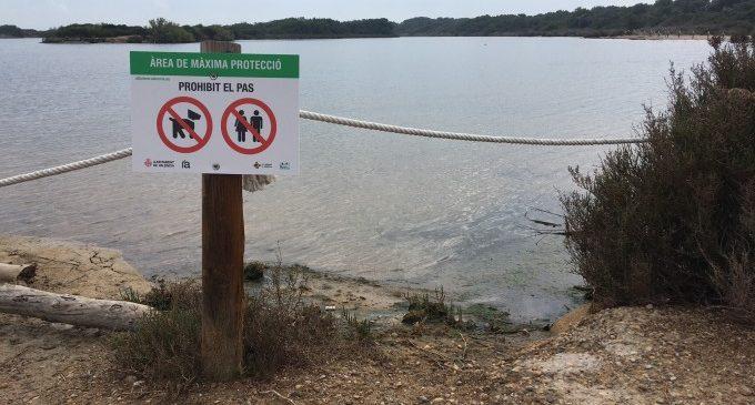 L'Ajuntament de València col·loca una vintena de cartells informatius per protegir la fauna de l'estany de Pujol