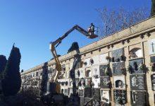 La Regidoria de Serveis Municipals de Sueca tala una desena d'arbres que provocaven desperfectes en el Cementeri