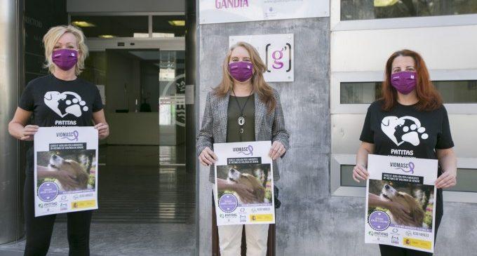 Gandia se suma al projecte solidari VIOMASC