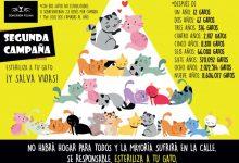 Quart de Poblet se suma a la segona campanya de control de la natalitat felina