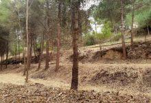 Habiliten tallafocs verds per a protegir d'incendis forestals el Parc Natural del Túria i La Canyada