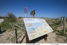 Gandia millora la platja de l'Auir amb nova senyalització i mobiliari