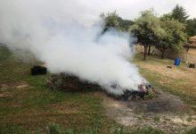 Ontinyent avança cap a una ciutat sense fum de cremes agrícoles
