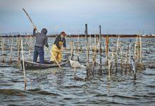 València ajuda als pescadors del Palmar amb una subvenció de 30.000 euros