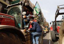 Arrossers convoquen una tractorada a València per a exigir mesures que garantisquen el seu futur