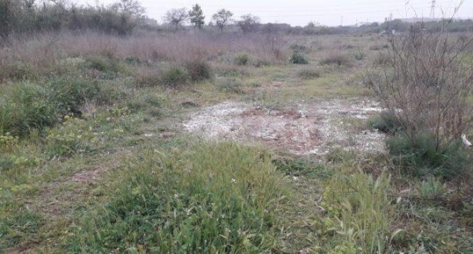 Es retiren en un dia 7.320 quilos de residus d'abocadors irregulars a l'antic llit del riu Túria
