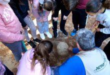L'alumnat de Benetússer aprén a observar i valorar la naturalesa urbana