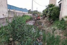 Carcaixent comença la neteja completa del Barranc de Gaianes