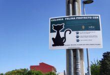 Bonrepòs i Mirambell instala los carteles informativos de Colonia Felina Proyecto CER