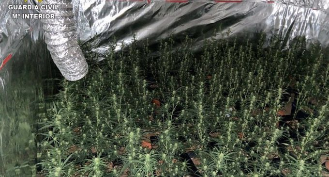Desarticulat un grup criminal dedicat al tràfic de drogues a la Ribera Alta