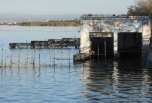 València adjudica les obres de restauració de l'embarcador de la Gola del Pujol,