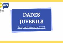 Un total de 111 personas han participado en los seis cursos realizados en Xàtiva por Juventud durante el primer cuatrimestre de 2021