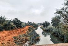 En marxa l'eliminació de canya en 229.000 m² de La Vallesa de Paterna