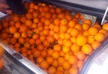 Sorprendidos in fraganti con 400 kilos de naranjas robadas en un vehículo