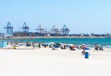 """Port de València espera que l'arribada de creuers internacionals siga un """"baló d'oxigen"""" per al sector"""