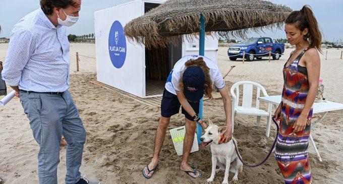 La playa can de Pinedo inicia la temporada con un 50 % más de superficie