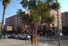 València suma 2.594 arbres des del 2020