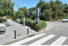 València poda vora 1.500 arbres durant el mes de maig