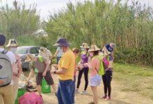 Planeta Massanassa realitza activitats mediambientals en l'Albufera