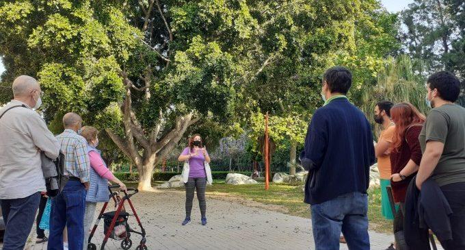 Almàssera organiza rutas guiadas para conocer los árboles más singulares del municipio