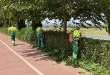 La Pobla de Vallbona adjudica el contracte de jardineria amb criteris de sostenibilitat