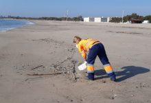 L'Ajuntament de València reforça el dispositiu de neteja en Sant Joan