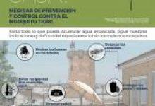 Paterna inicia la campanya contra el mosquit tigre coincidint amb l'arribada de les bones temperatures