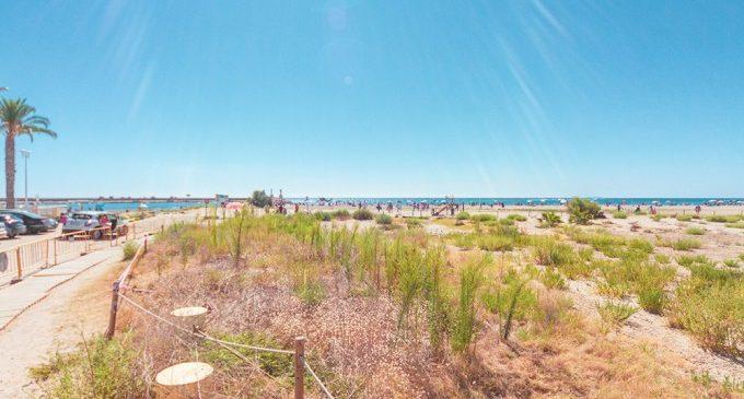 Massamagrell colabora en la realización de actividades medioambientales para proteger y cuidar su playa