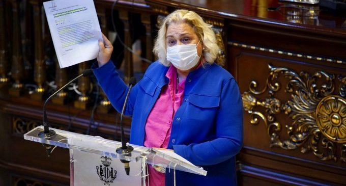 """El PP de València assegura que """"augmenten, una altra vegada, en l'últim mes, les queixes per brutícia, jardins, falta de Policia Local, trànsit i EMT"""""""