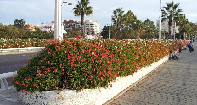 El Pont de les Flors romandrà tancat durant una setmana per obres del Cicle Integral de l'Aigua