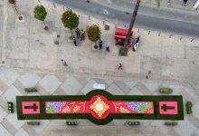El tapís floral engalana la festivitat del Corpus als peus de la torre de Torrent