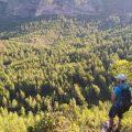 Alzira pone en marcha el voluntariado ambiental en prevención de incendios forestales campaña 2021