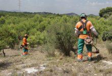 Paterna incrementa la vigilància en La Vallesa davant l'augment del risc d'incendis per altes temperatures