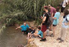 El projecte Emys d'Acció Ecologista reprén la seua activitat en el Barranc del Horteta de Torrent