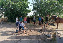 """València impulsa l'agricultura sostenible a través del projecte """"Haca i mans"""""""