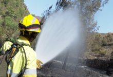 L'operatiu per onada de calor de la conselleria mobilitza a més de 500 persones per a intensificar la vigilància i evitar incendis forestals