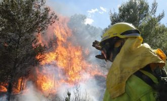 Bravo celebra que julio y agosto acaban con menos hectáreas destruidas que 2019 pese a las olas de calor