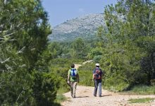 CaixaBank i Fundació Bancaixa convoquen ajudes per 150.000€ per a projectes mediambientals en la Comunitat Valenciana